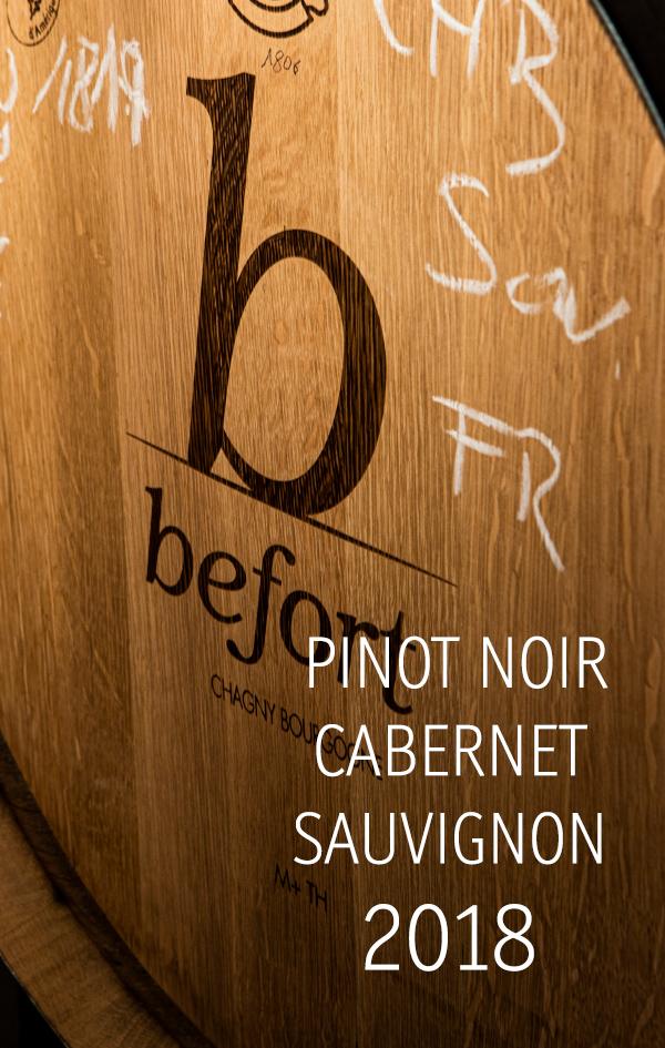Pinot Noir & Cabernet Sauvignon, 11,60 €/Fl.
